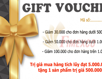 GET GIFT VOUCHER OF FIMEXMART WITH SPECIAL DISCOUNT FOR NEW CUSTOMERS